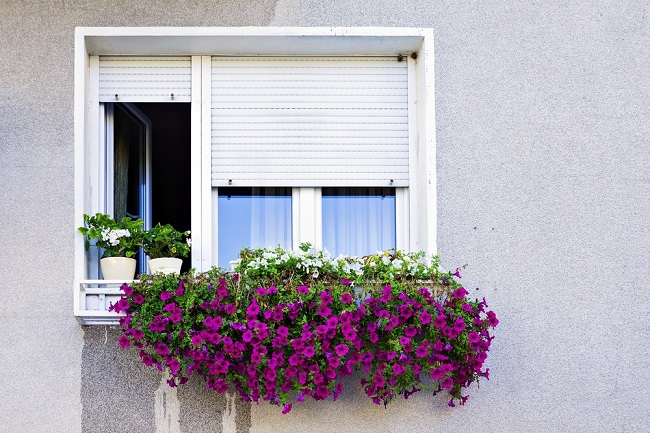 Choose The Finest Window Roller Shutters For Your Home
