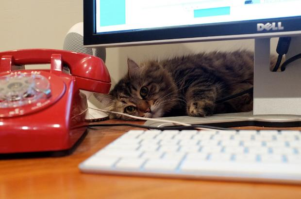 Off-Beat Productivity Tips