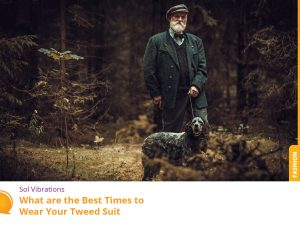 Older Man Hiking With the Dog Wearing Tweed Suit - Play Media